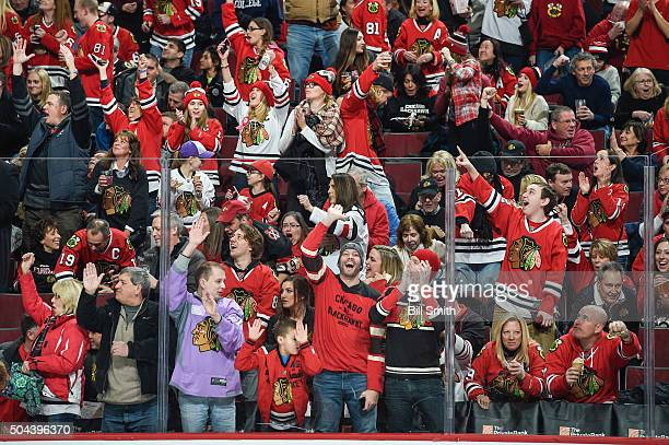 The crowd reacts after the Chicago Blackhawks scored against the Colorado Avalanche in the second period of the NHL game at the United Center on...