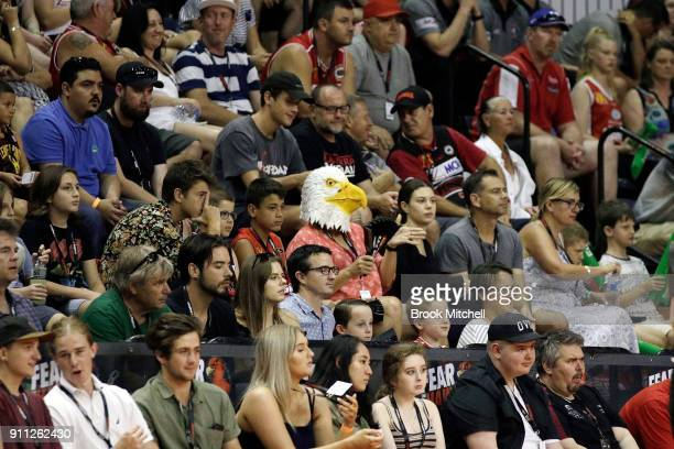 The crowd show support during the round 16 NBL match between the Illawarra Hawks and the Cairns Taipans at Wollongong Entertainment Centre on January...
