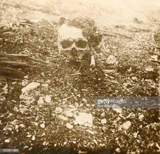 The Crown Prince' Verdun northern France 1916 Fleury the ravine of death a skull dubbed 'The Crown Prince' serves as a nighttime point of reference...