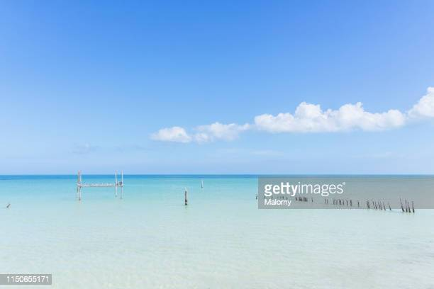 the crystal clear ocean with turqoise water at a beach on the island of holbox, mexico - holbox island fotografías e imágenes de stock