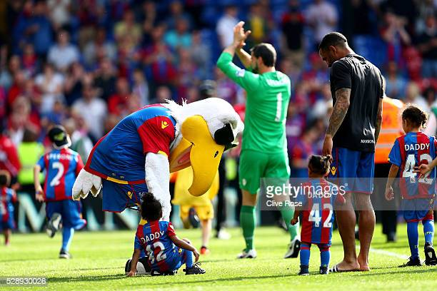 The Crystal Palace mascot helps an infant to their feet after the Barclays Premier League match between Crystal Palace v Stoke City at Selhurst Park...