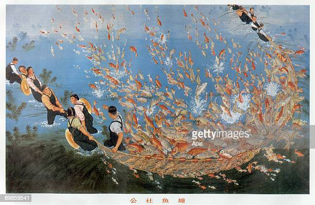 The cultivation of fish in fish pond traditional and important Chinese rural peasant activities here the crop is gathered by net in the fish pond of...