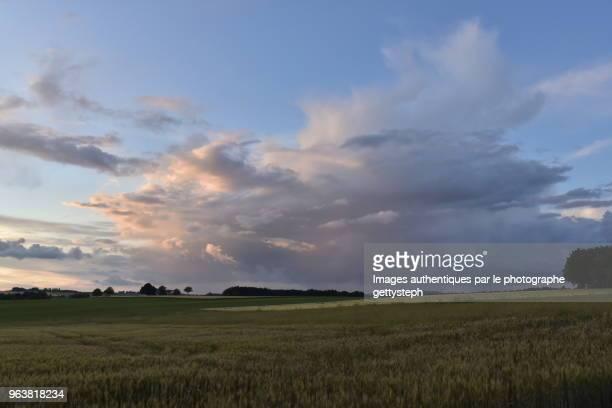The cumulonimbus cloud in dusk