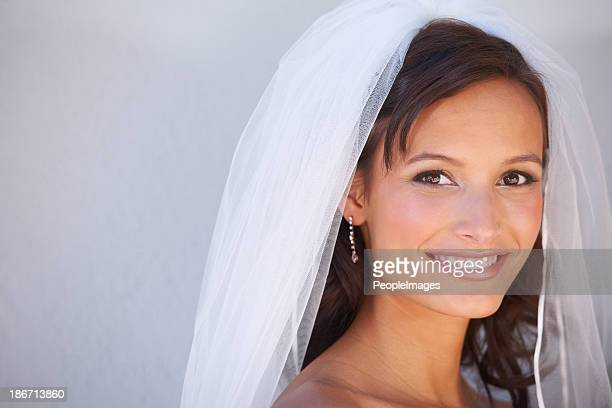 the day is finally here - veil stock photos and pictures