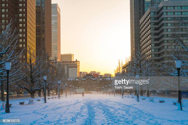 The daybreak after the winter snowstorm in Marunouchi Chiyoda-ku Tokyo Japan – January. 23 2018. The sunrise illuminates the snow-covered cityscape, which are sky, lines of ginkgo trees, street and skyscrapers around the Tokyo Station.