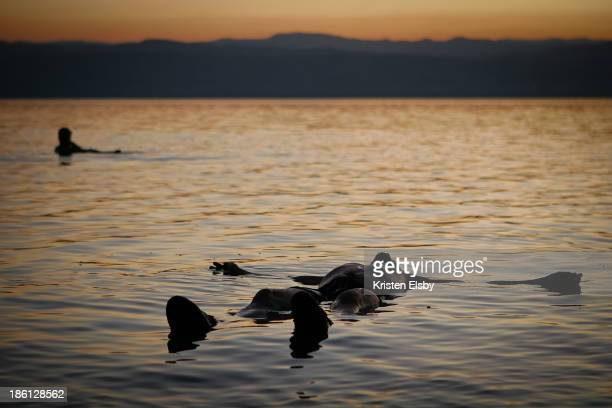 CONTENT] The Dead Sea lies 400m below sea level and is hypersalty causing bathers to bob and float on the surface It is a hostile environment to all...