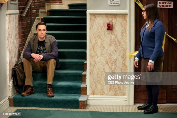 The Decision Reverberation Pictured Sheldon Cooper and Amy Farrah Fowler Koothrappali is worried people won't take him seriously in his own field...