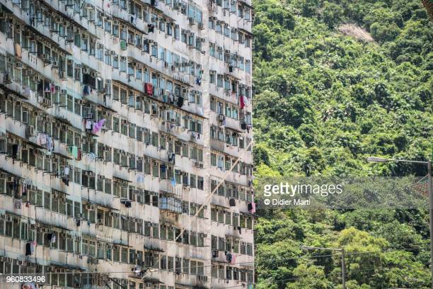 The decrepit facade of a very large aparment block contrast with the lush vegetation in Norht Point district in Hong Kong