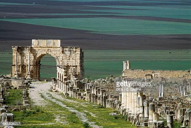 The decumannus and Arch of Caracalla, 216-217, Roman city of Volubilis , Morocco. Roman civilisation, 3rd century.