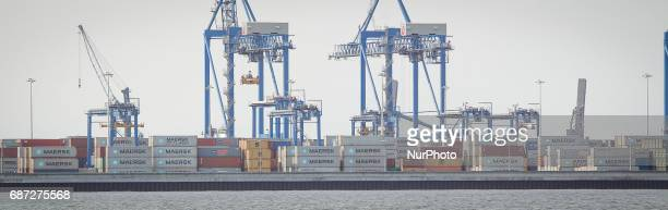 The deepwater container terminal at the Norht Terminal in Gdansk is seen on 20 May 2017 The port is one of the fastest growing in the Baltic region...