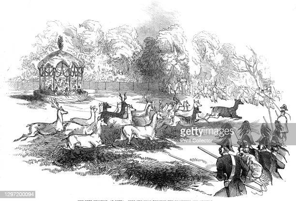 The Deer Shooting at Gotha - deer breaking through the chasseurs and keepers, 1845. Spectators watch from a pavilion as hunters with guns advance on...