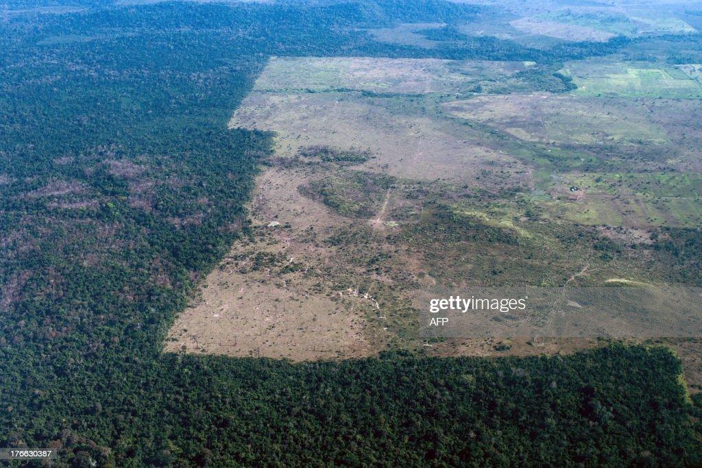 BRAZIL-ENVIRONMENT-DEFORESTATION-AMAZON : News Photo