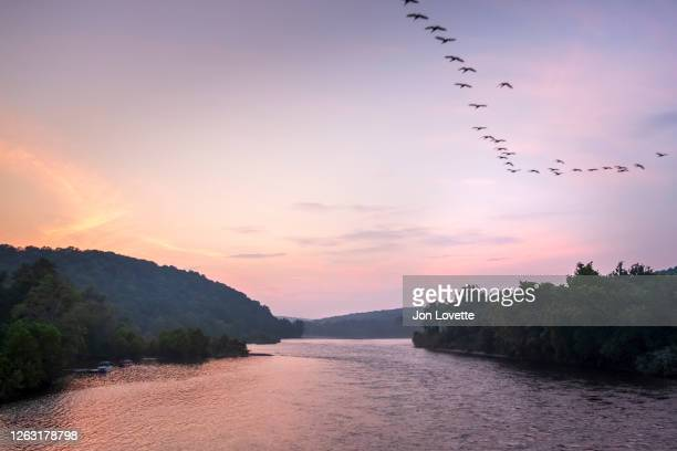 the delaware river looking towards new jersey from pennsylvania at sunset - pennsylvania stock-fotos und bilder