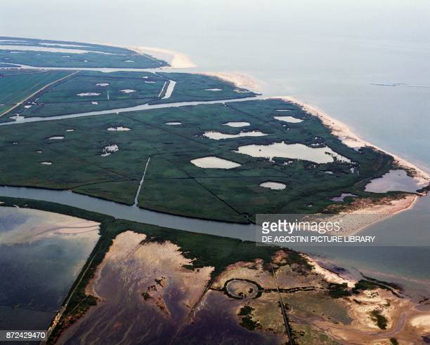 The delta mouth of the Po river Polesine Veneto Italy