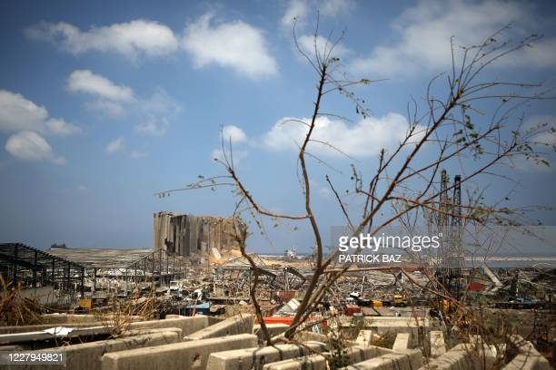 The destroyed grain silo in Beirut's port is pictured on August 7 three days after a massive explosion in the Lebanese capital's port left scores of...