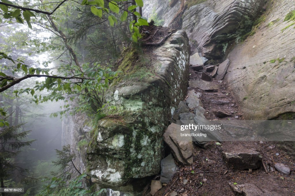 The Devils Path in the Catskill Mountains : Stock Photo
