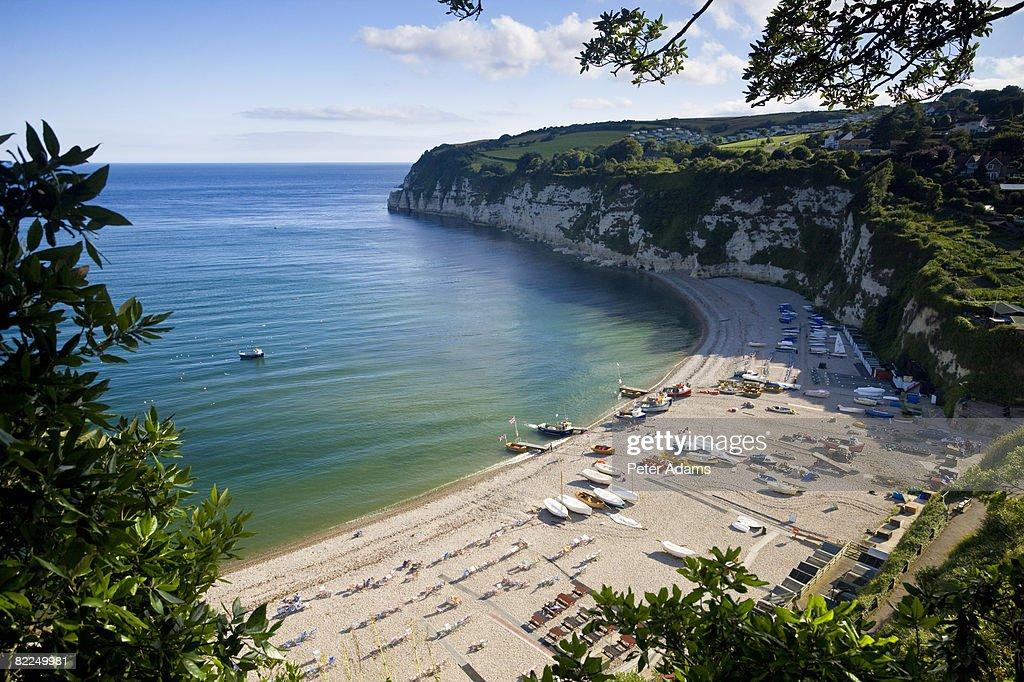 The Devon Coast, England : Stock Photo