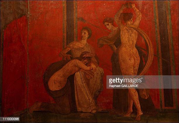 The difficult task of preserving Pompeii a race against decay Pompeii the House of Mysteries in Pompei Italy in October 2004 A section of a large...