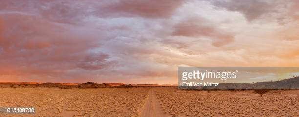 the dirt road leading into the mesosaurus fossil site and quiver tree forest, namibia. full colour horizontal landscape image. - semiarid stock-fotos und bilder