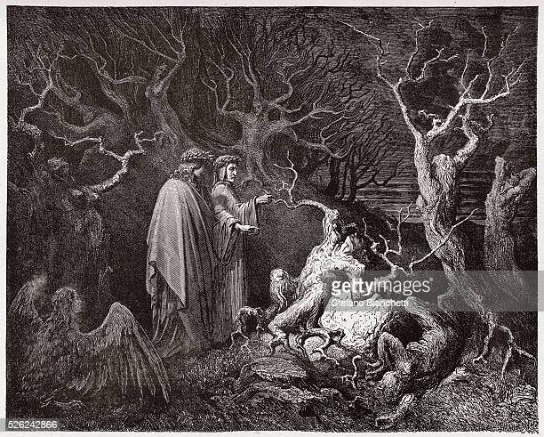 The Divine Comedy Inferno Canto 13 The suicides in the forest by Dante Alighieri Engraving by Gustave Dore 1885