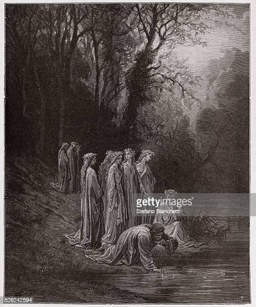 The Divine Comedy , Purgatorio, Canto 33 : Dante drinks of the River Eunoe - by Dante Alighieri - Engraving by Gustave Dore , 1885