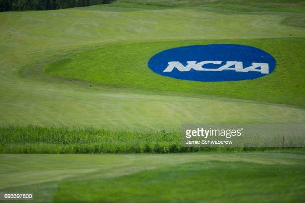 The Division I Men's Golf Individual Championship is held at Rich Harvest Farms on May 29 2017 in Sugar Grove Illinois