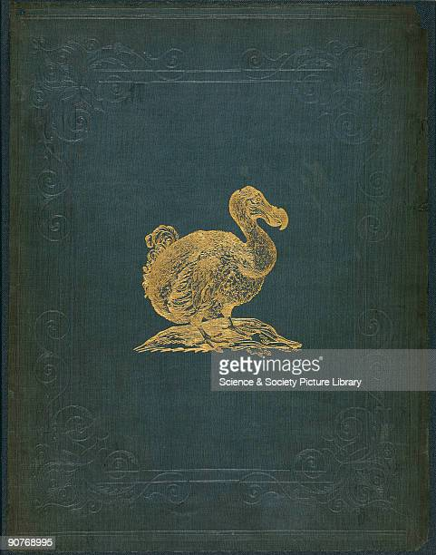 The dodo and solitaire were hunted to extinction by Europeans and the domestic pets they introduced These flightless birds were related to the pigeon...