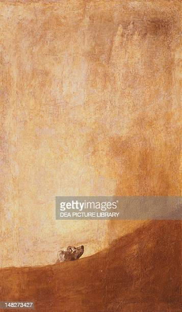 The dog 18201821 by Francisco de Goya Madrid Museo Del Prado
