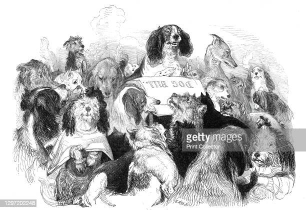 "The Dog Bill Committee, drawn by T. Landseer, 1844. From ""Illustrated London News"" Vol V. Artist Thomas Landseer."
