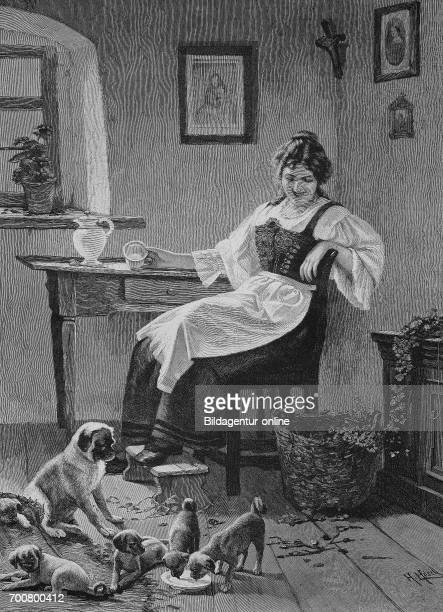 The domestic dog has many puppies housewife gave for the dog milk Woodcut from 1892