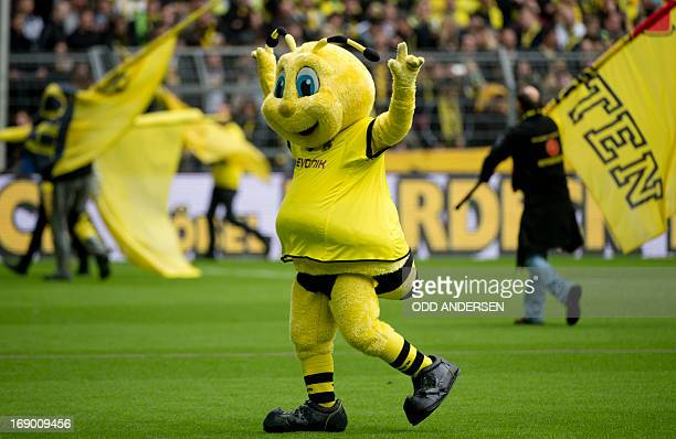 The Dortmund mascot is seen on the pitch prior to the German first division Bundesliga football match between Dortmund and Hoffenheim at the Signal...