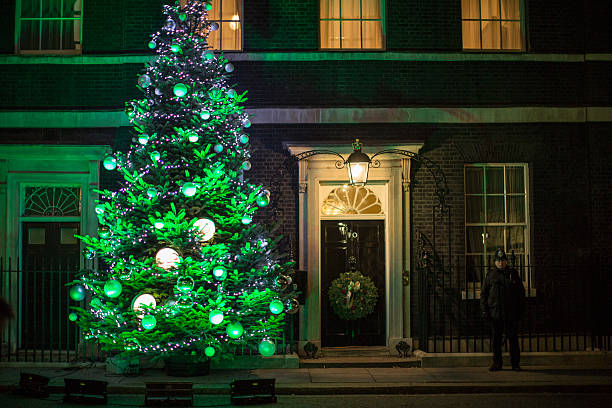 The Downing Street's Christmas tree is lit at 10 Downing Street on December  8, 2014 - The British Christmas Tree Association Deliver Their Winning Tree To