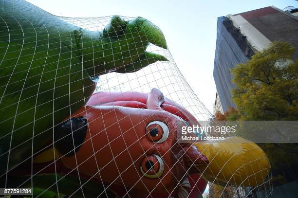 The Dr Seuss Grinch and Max balloon is inflated to prepare for the 91st Annual Macy's Thanksgiving Day Parade on November 22 2017 in New York City