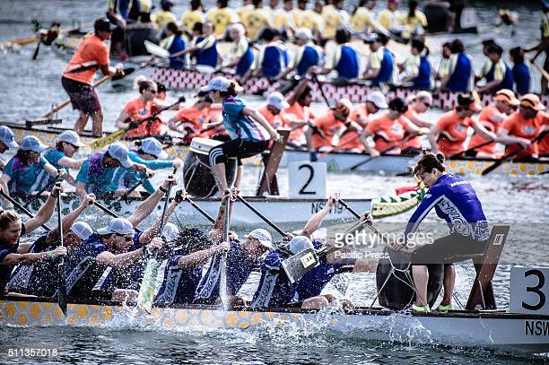 HARBOUR SYDNEY NSW AUSTRALIA The dragon boat race participants paddle to win A Chinese New Year finale of Dragon Boat Racing started with an...