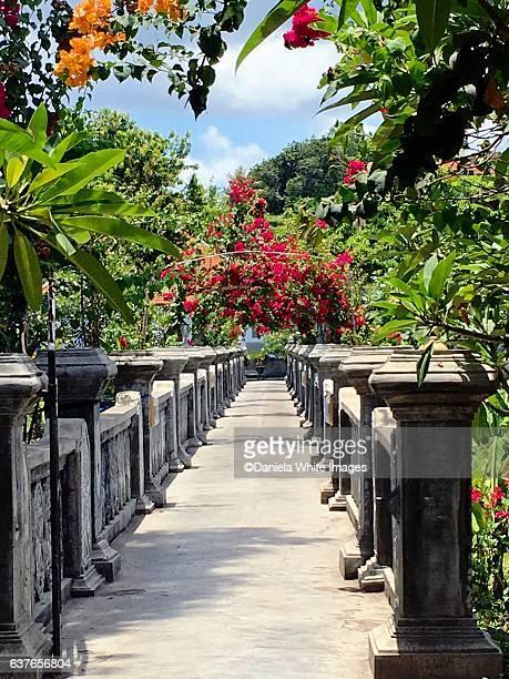 The Dragonfly Bridge