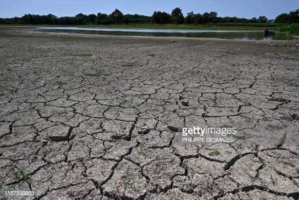 The dried out bank of a pond is pictured on July 22 2019 in the Dombes region in VillarslesDombes central eastern France in the French department of...