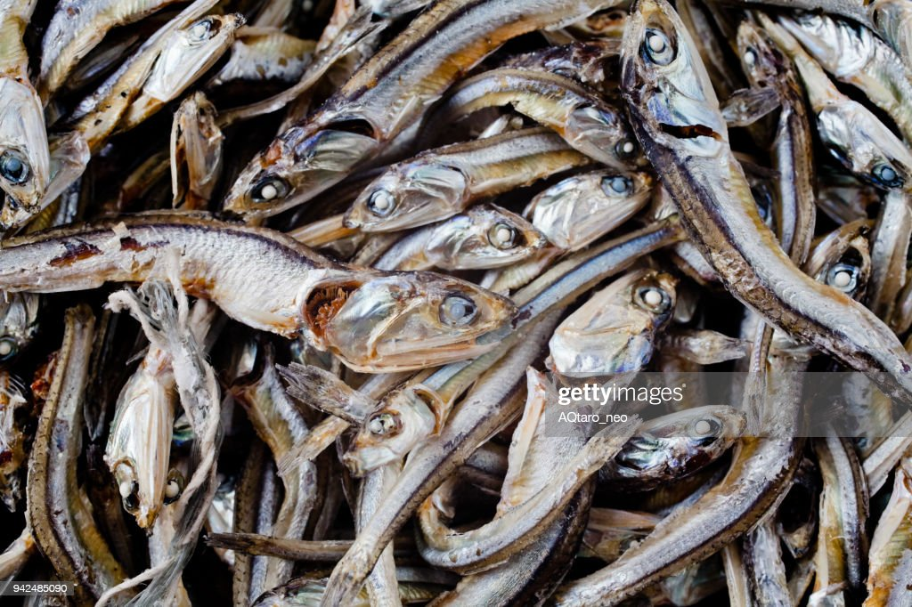 The dried small sardines : Stock Photo