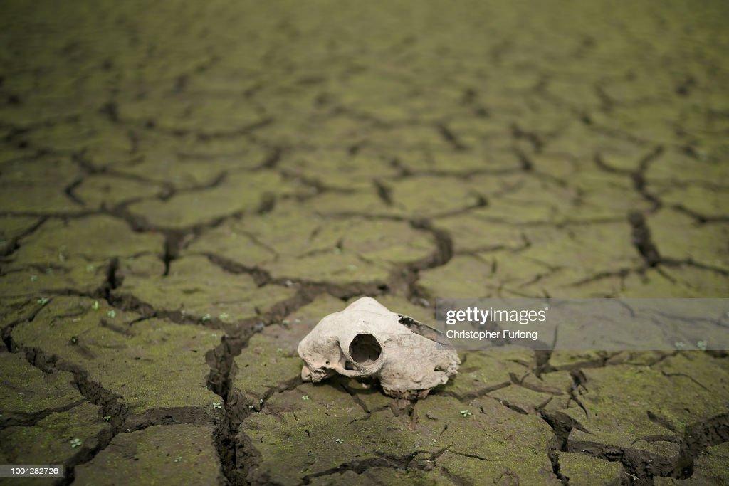 Reservoirs Dry Out As British Heatwave Continues : Nachrichtenfoto