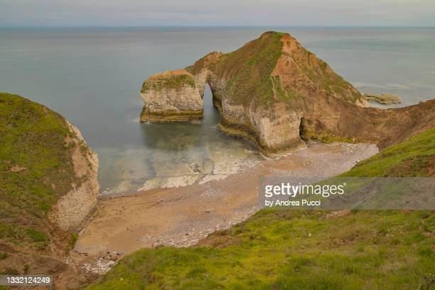 the drinking dinosaur, flamborough head, yorkshire, united kingdom - sea stock pictures, royalty-free photos & images