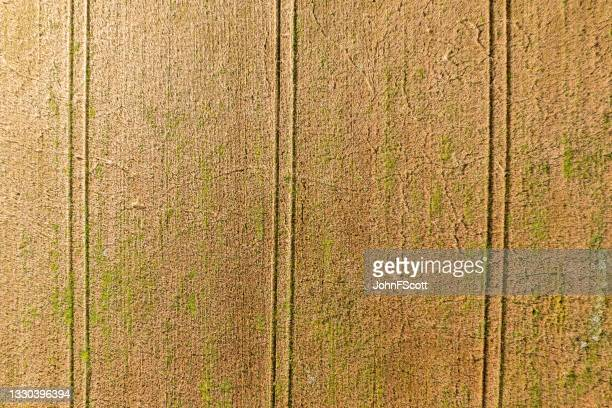 the drone view looking directly down onto a crop - johnfscott stock pictures, royalty-free photos & images