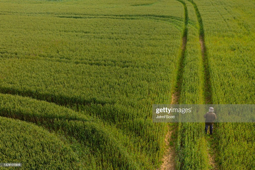 The drone view of a senior man standing in a field : Stock Photo