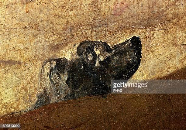 The drowning Dog 18201823 by Francisco de Goya