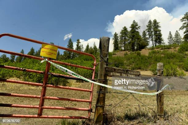 The Dry Fork trail in the San Juan National Forest is one of many trails closed as a result of the 416 fire on June 12 2018 in Durango Colorado The...