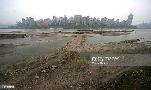 The dry Yangtze River which has dropped around 40 percent sits before the city skyline February 25 2007 in Chongqing Municipality China A drought has...