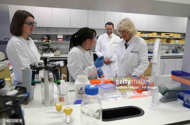 The Duchess of Cornwall known as the Duchess of Rothesay chats with lr Alison Richmond and Jessica McClure alongside Professor Cosimo De Bari whilst...