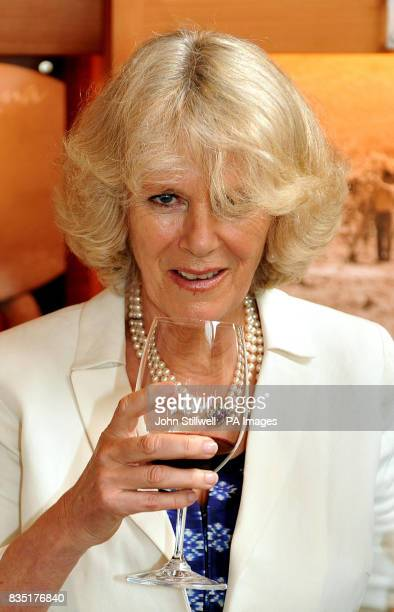 The Duchess of Cornwall prepares to drink a glass of red Chilean wine during a visit to a Vineyard in the south American country