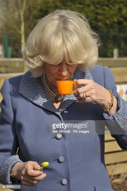 The Duchess of Cornwall pretends to take a sip of afternoon tea gieven to her by children while they were having a pretend picnic in the playground...