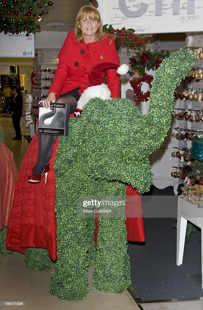 The Duchess Of York Launches Selfridges' Green Christmas Shop - London : News Photo