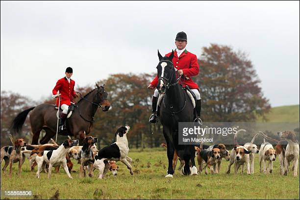 The Duke of Buccleugh's Fox hounds are lead by Master of the Hounds Trevor Adams to take part in a fox hunt on November 08 2011 in St Boswells...