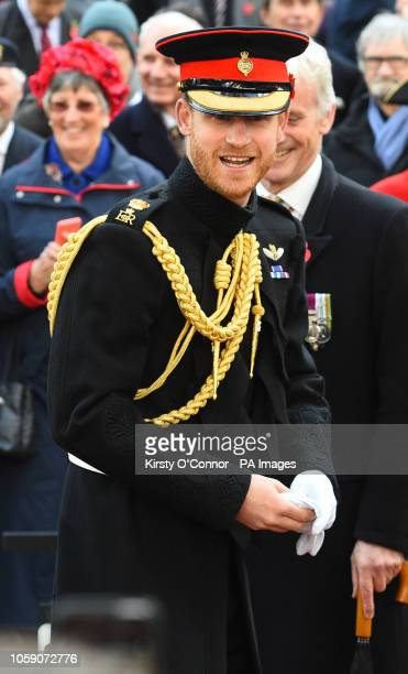 The Duke of Sussex visits the Field of Remembrance at Westminster Abbey which has been organised by the Poppy Factory and held in the grounds of...